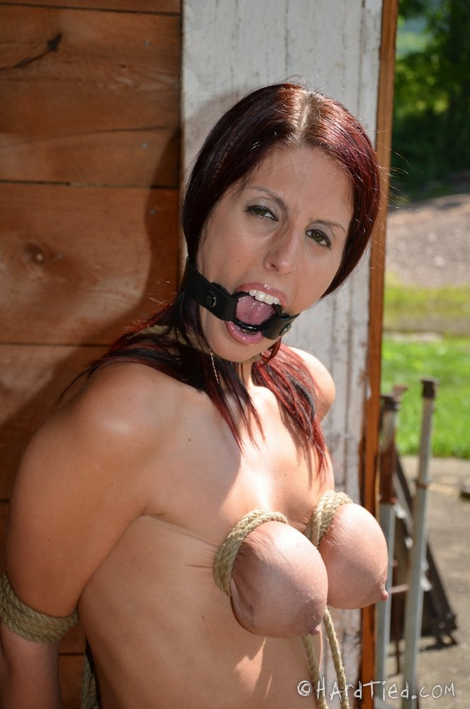 Price for blow job from escort