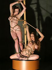 Two girls in shibari bondage
